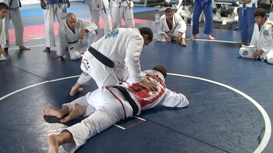 half-guard-to-turtle-sweep