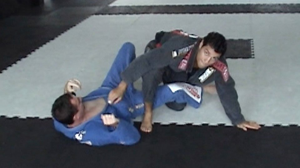 Spider Guard Sweep2