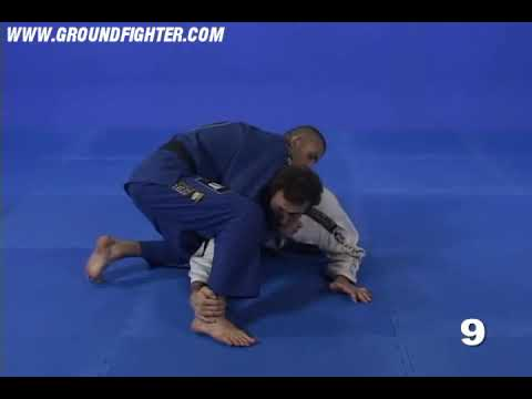 Eduardo Telles Turtle & Octopus Guard – Turtle Sweeps 2